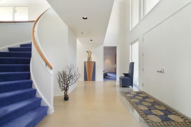 Modern foyer at luxury home with blue carpeted staircase