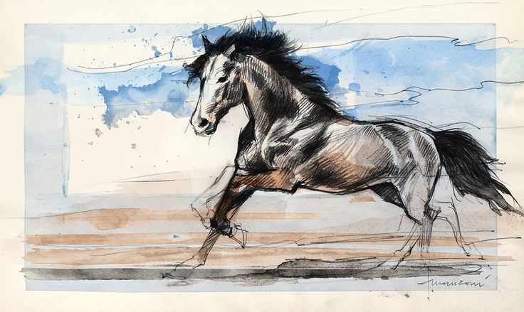 Horse, coloured pencil and watercolours.  Cavallo, matita colorata e acquerello.  #art #painting #ferrari #flaviomanzoni #passion #madeinitaly #designer #flaviomanzonidesign #ferraridesign #sketches #cardesign #drawings #illustration #art #cars #automotivedesign