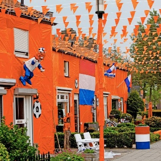 Holland. orange madness during a soccer competition.