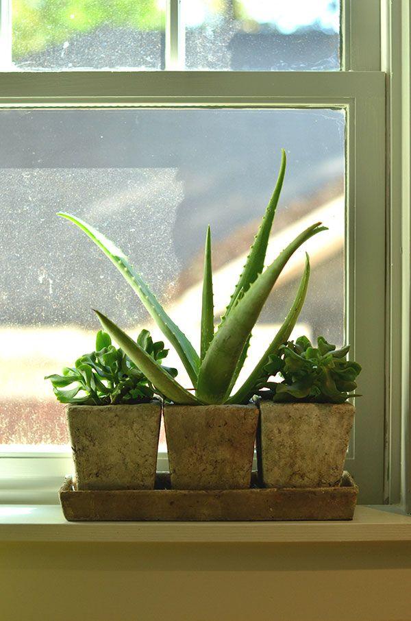 the 25 best bathroom window sill ideas ideas on pinterest indoor window planter kitchen. Black Bedroom Furniture Sets. Home Design Ideas