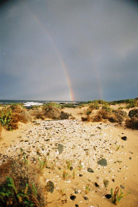 Tarkine Tasmania coastal walk