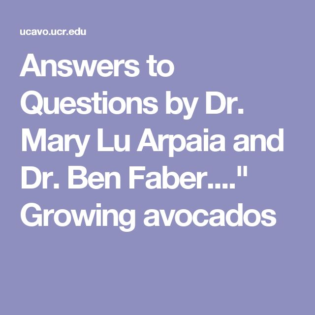 "Answers to Questions by Dr. Mary Lu Arpaia and Dr. Ben Faber....""  Growing avocados"