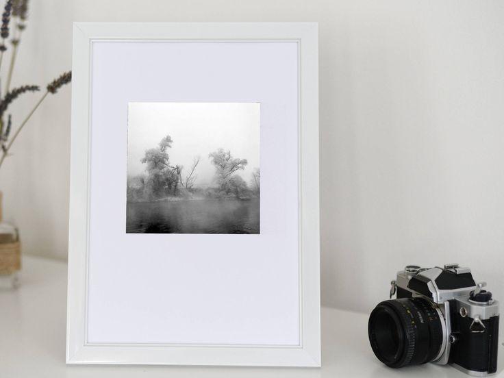 Original photography, home decor, fine art, gift, mini, Transylvania, winter, broken  tree 5x5 plus white border, limited edition of 20