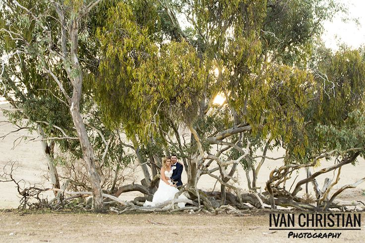 Hannah and Jake sitting in a island of trees in the middle of a vast field - Ivan Christian Photography