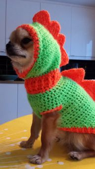 """Svenska här My daughter owns a chihuahua dog named """"Biffen"""" wich means """"Steak"""" in Swedish, but it can also mean a really muscular person. He gets cold in the winter so I made him some costumes to s..."""