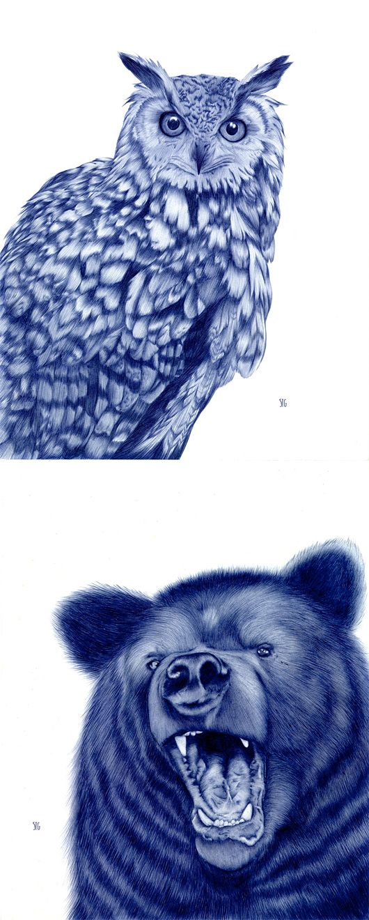 Bic Pen Drawings of Animals by Sarah Esteje