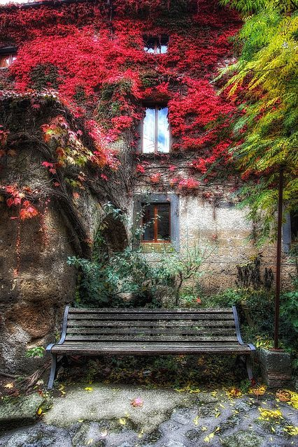 ♂ old garden wall La banca con le foglie rosse by Hitman.47, via Flickr