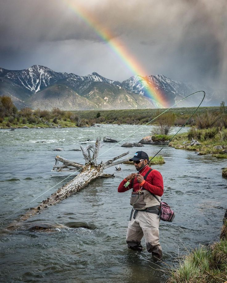499 best fishes n bishes images on pinterest fishing for Fly fishing spots near me