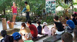 Namuang Safari Park https://www.facebook.com/IslandInfoThailand