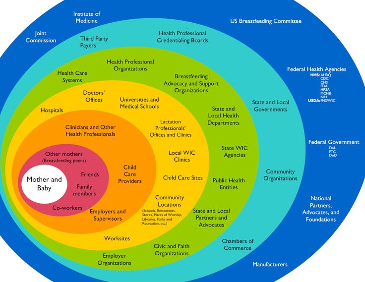There are various theoretical models of health promotion and since interventions to promote exclusive breastfeeding are considered from a multi-disciplinary approach, the socio-ecological model pro…