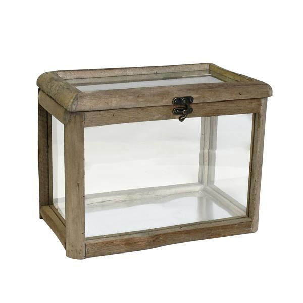 Fremont Wood & Glass Hinged Lid Case