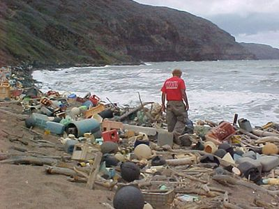Marine debris on the Hawaiian coast - links to Wikipedia article about marine debris - we so need to clean up our act