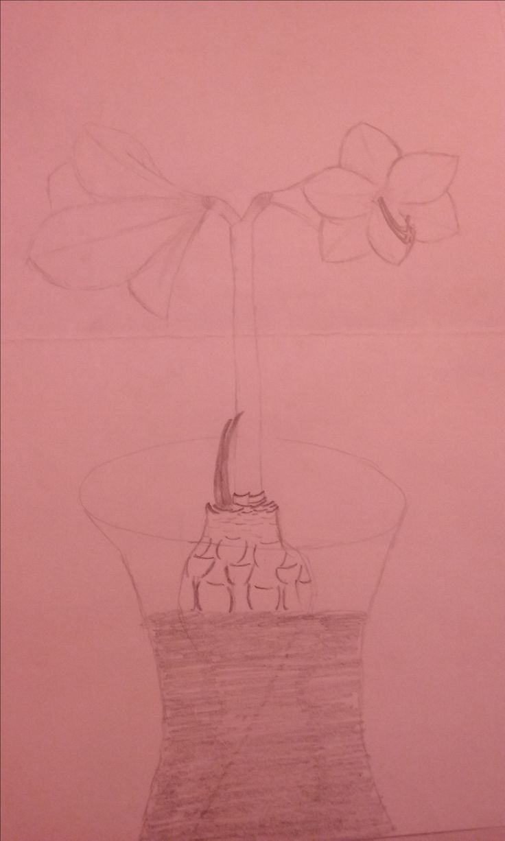 I liked this flower so I drew it, I hope u like it 2.