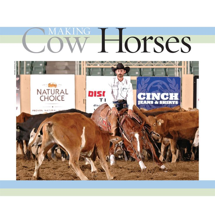 Follow along with the next installment of Making Cow Horses as changes come to the weather, ranches and ranch horses. Get your copy of the December issue of The American Quarter Horse Journal on www.aqha.com/journal.