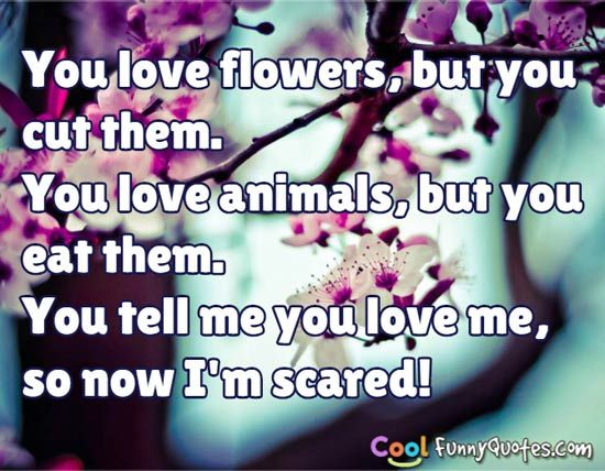 Very Funny I Love You Quotes : Love Quotes - Cool Funny Quotes.com via Relatably.com