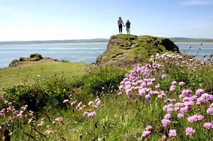 Northumberland Coast.