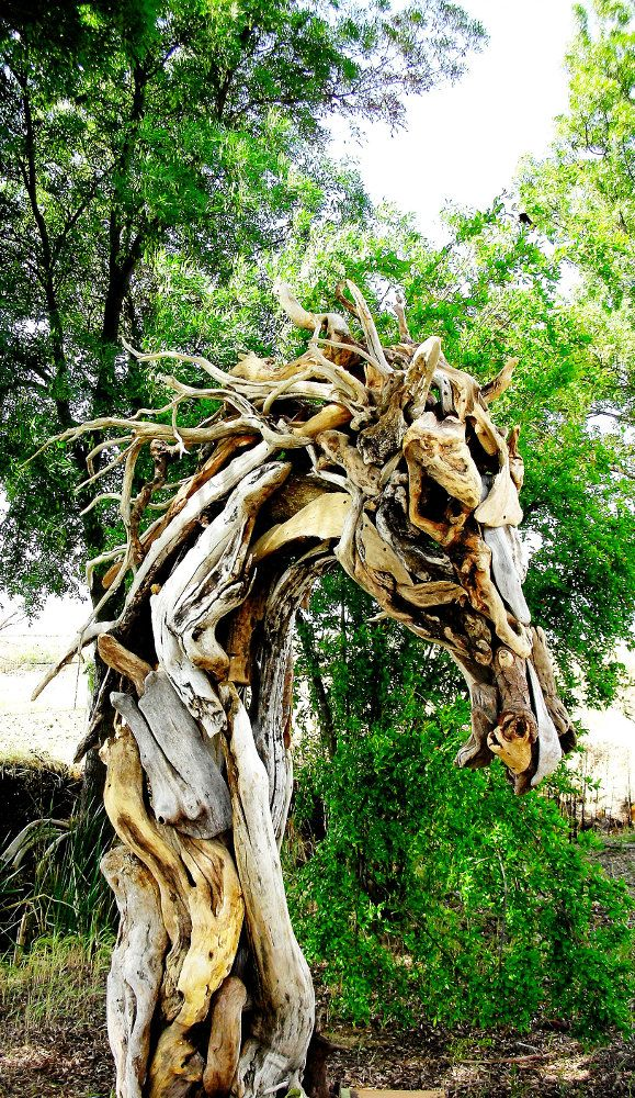 1000 images about sculpture on pinterest l 39 wren scott Driftwood sculptures for garden