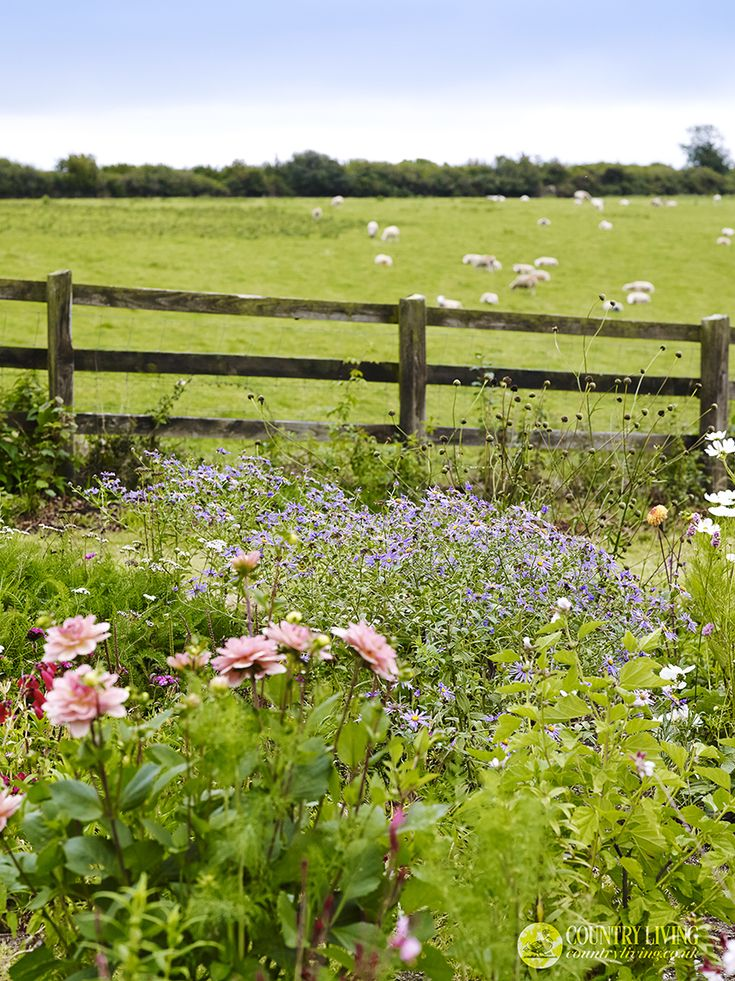 A summer country view. Photo by Jason Ingram. countryliving.co.uk