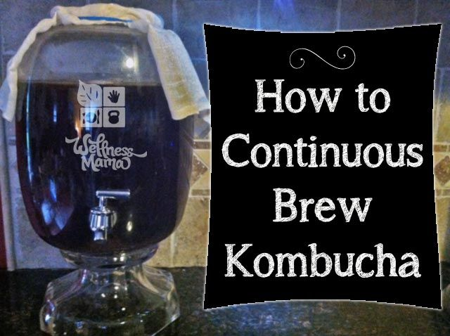Make continuous brew kombucha using this simple method to make this probiotic and digestive enzyme rich drink.