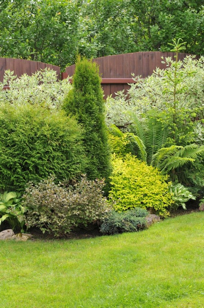 For an easy, low-care garden, concentrate on foliage color and texture for interest. The bold leaves of hostas are tucked in among evergreens in various shades of green and gold. The white variegated dogwoods in the rear give the planting a light airy feeling. The fern gives textural interest.