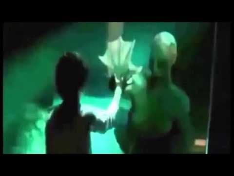 Sirena Real grabada viva en un acuario de mar abierto de este año - YouTube