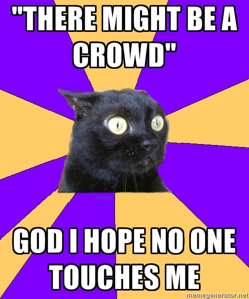 Hahahaha what the hell is wrong with me. All the anxiety cat memes describe me too well