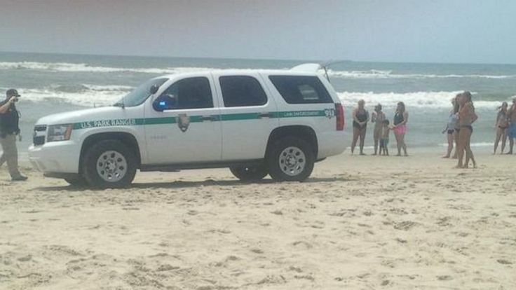 Shark Attack: Man Airlifted to Hospital After 7th Reported Incident in North Carolina
