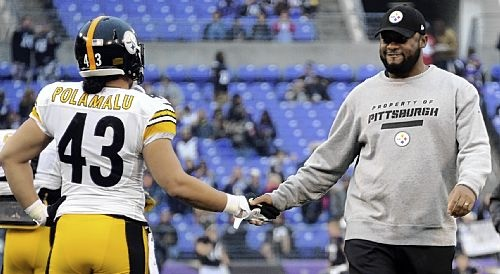 Steelers' Polamalu takes different approach after injuries - Pittsburgh Post-Gazette