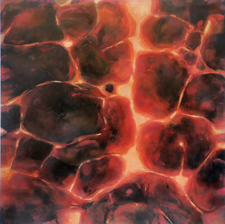 Fuego 1 de 4 oleo sobre panel de madera 60 x 60 cm 2009