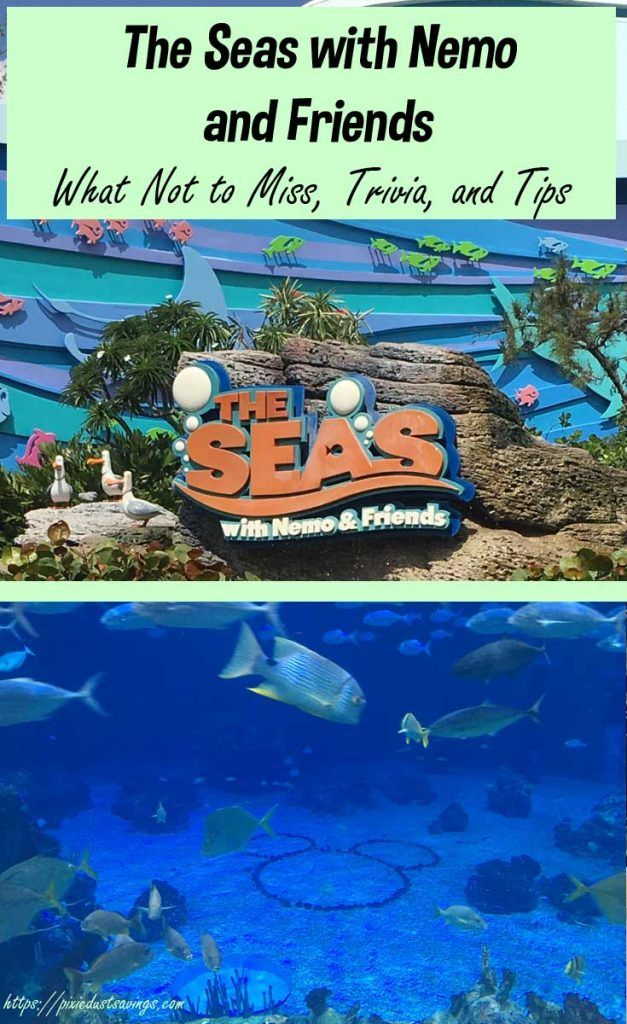 Disneys Aquarium | The Seas with Nemo and Friends, Disney World Tips, Epcot Attractions, Finding Nemo, Finding Dory