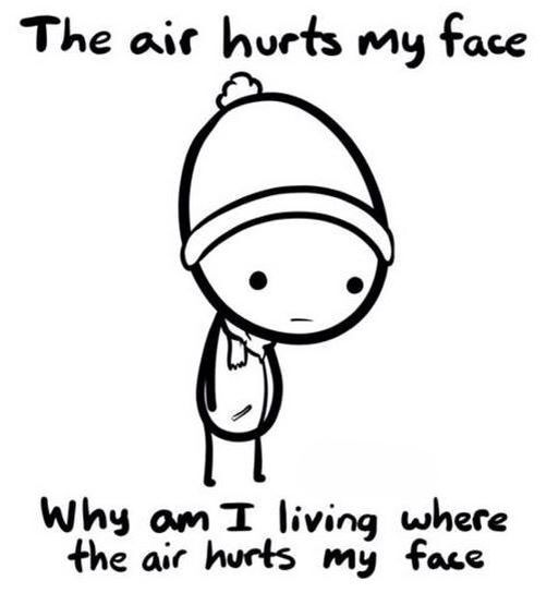 The air hurts my face - why am I living where the air hurts my face. :(