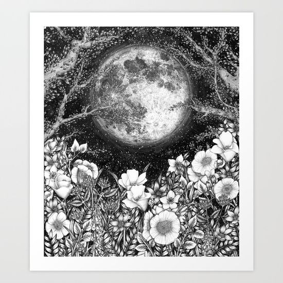 Midnight in the Garden - drawn with ballpoint pen - by ECMazur #art #illustration #penart #ballpointpen #moon #luna #floralart
