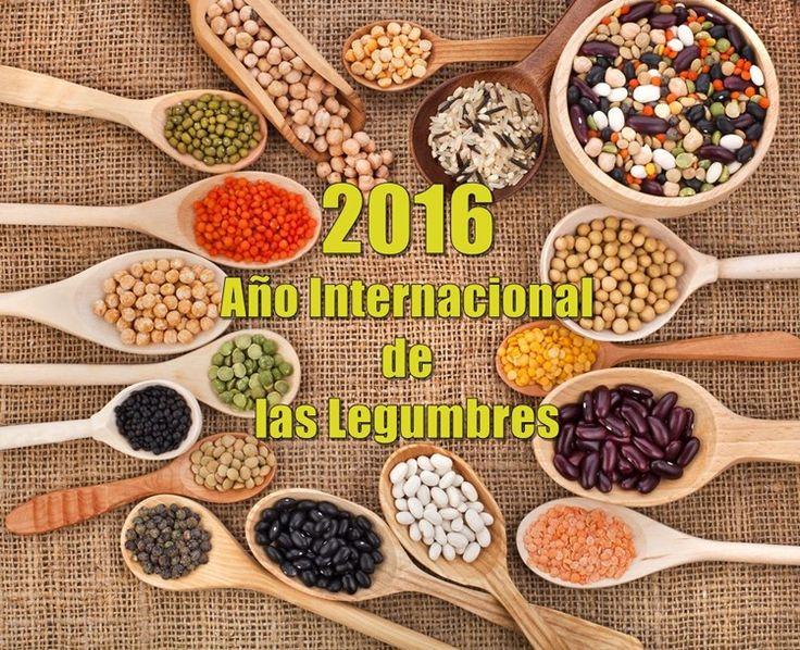Año Internacional de las Legumbres 2016