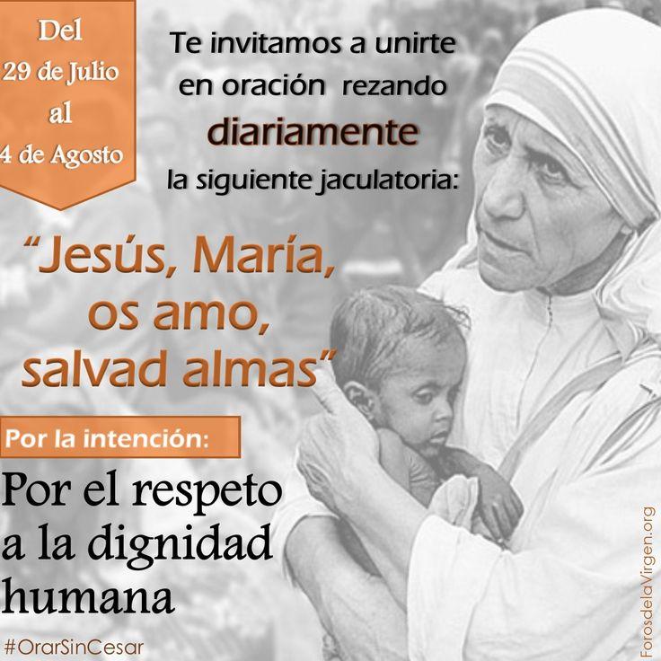 """#OrarSinCesar 🙏 Te invitamos  a unirte en oración rezando DIARIAMENTE la jaculatoria:  """"Jesús, María, os amo, salvad almas""""    ❤️ INTENCIÓN: Por el respeto a la dignidad humana    📌Del 29 de Julio al 4 de Agosto.    🌟UN ACTO DE AMOR DECIDE LA SALVACIÓN ETERNA DE UN ALMA  http://forosdelavirgen.org/20048/mensaje-de-amor-de-sor-consolata-betrone-por-las-almas-del-purgatorio/"""