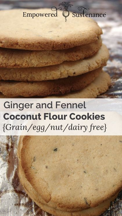 coconut flour cookies with ginger and fennel (grain/dairy/nut/egg free)