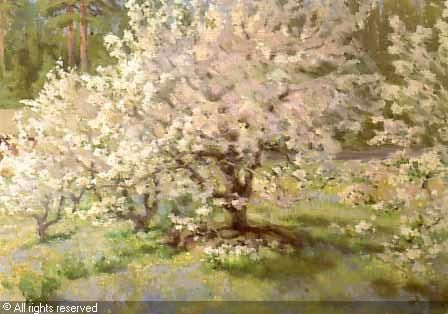 biese-helmi-1867-1933-finland-blommande-appeltrad-881576.jpg (448×314)