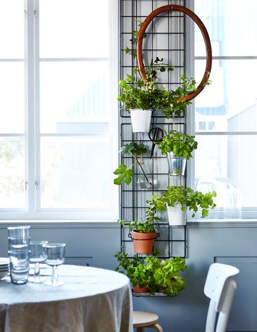 Con due pannelli a griglia montati tra due finestre si può decorare la parete con piante ed erbe aromatiche, una cornice ovale e un paio di forbici - IKEA