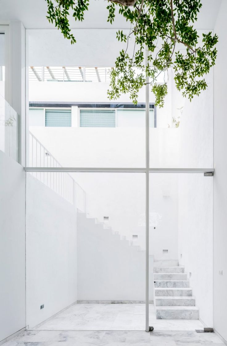 Behind the white walls of this house in Mexico, architect Abraham Cota Paredes has carved out a courtyard and added a huge window to offer views of a tree planted inside