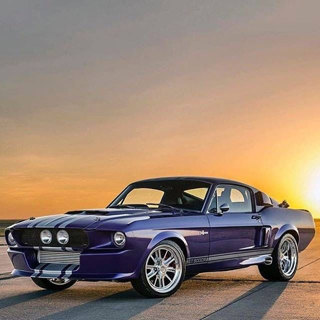 Shelby Gt Coupe: 132 Best Images About Ford Mustang On Pinterest
