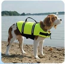 Dog Life Vest--Um, I thought all dogs could swim. Many don't like to, but can do it, right? Or maybe this is for long distance swims?
