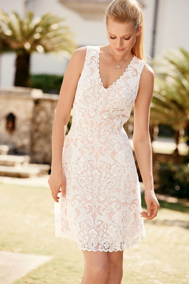 Next online party dresses - Buy Premium Corded Lace Dress From The Next Uk Online Shop
