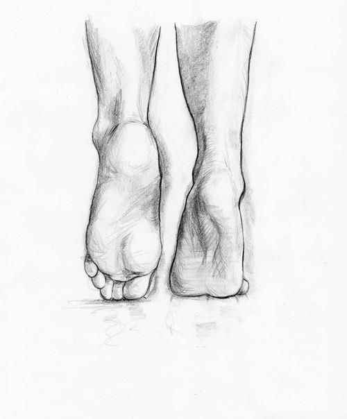 Feet pencil sketch study the form