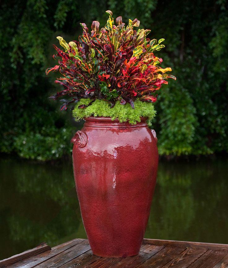 Art Pottery | Pamela Crawford