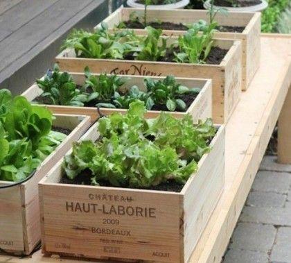 C'est une excellente idée pour les jardiniers pour manquent de place sur leur terrain. Allez au marché aux puces ou dans votre magasin local et cherchez des boîtes en bois qui font la bonne taille pour faire pousser des plantes. Plantez et jardinez normalement.