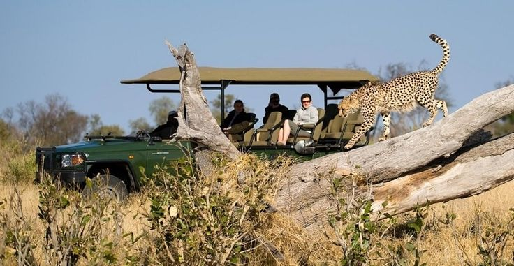 Did you know that you can book your entire trip to Southern Africa on CAT-Africa without speaking to anyone, and still have peace of mind?