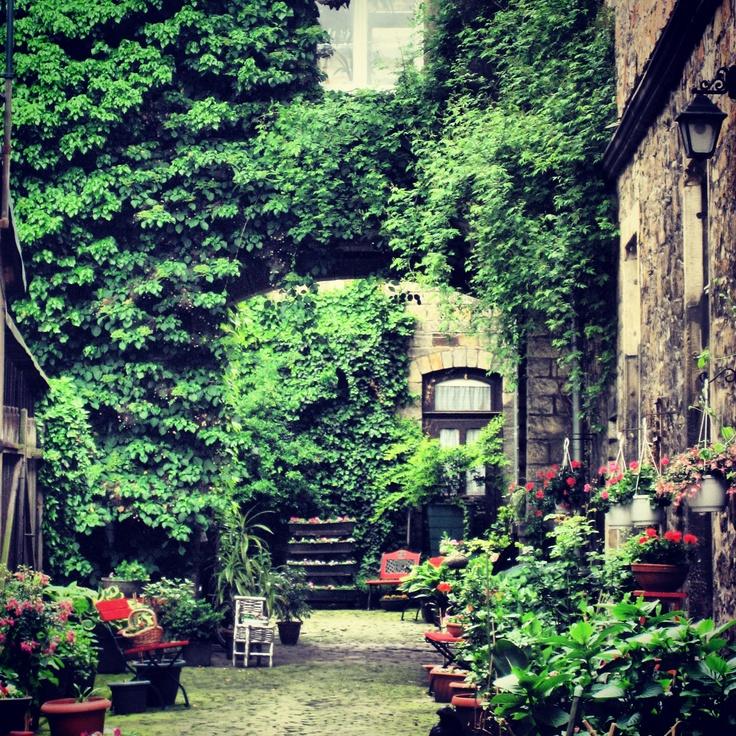 Jardín del patio interno