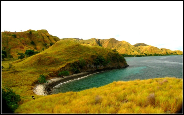 View at Komodo Island #Beach #Holiday #Travel #Summer #Paradise #Nice