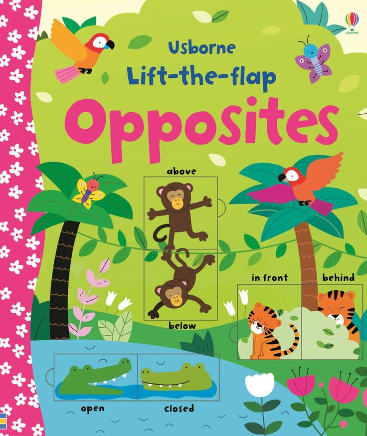 """Find out more about """"Lift-the-flap opposites"""", write a review or buy online."""
