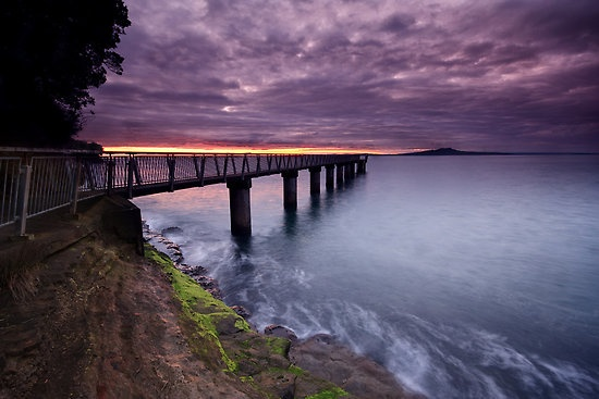 Chris Gin / Sunrise at Murray's Bay, Auckland, New Zealand.