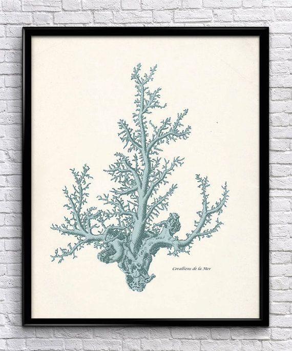 Nautical Sea Coral Set Vintage Prints by UniquelyGiftedArt